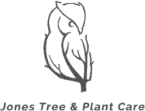 Jones Tree & Plant Care Logo